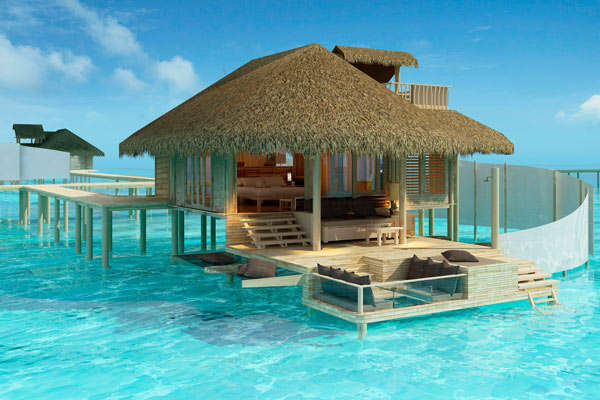 Maldives dream (4)