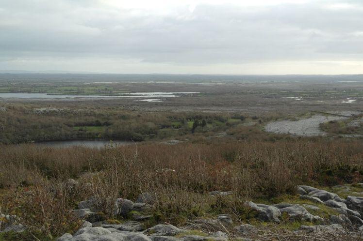 Ireland - County Clare - Vernie Par La Vie ZM