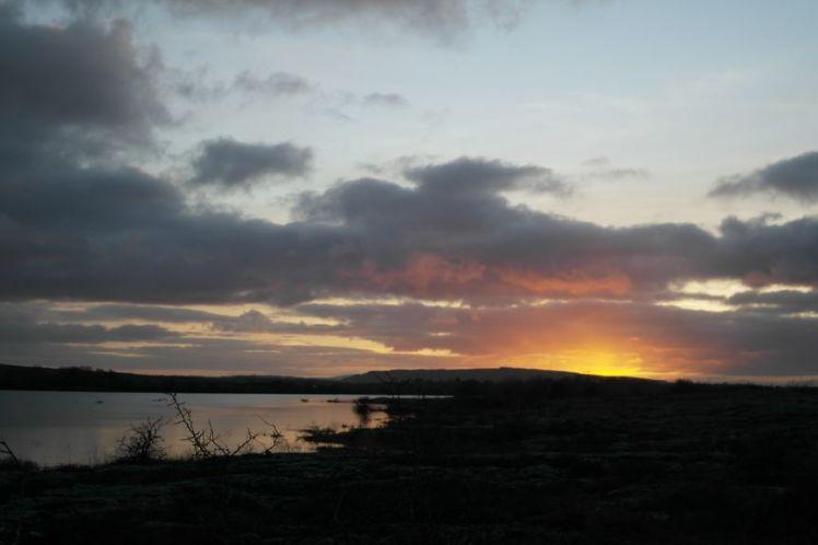 Ireland - County Clare - Vernie Par La Vie ZW