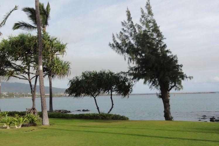 Voyage de noces à Hawaï - Big Island - Vernie par la Vie - A