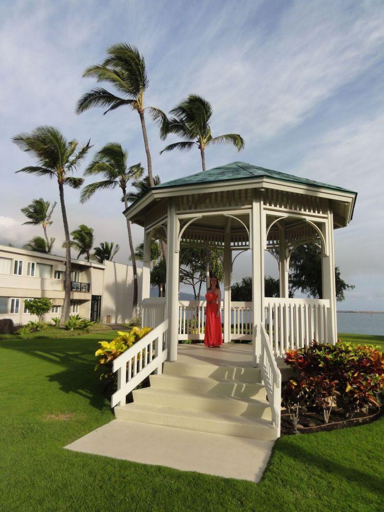 Voyage de noces à Hawaï - Big Island - Vernie par la Vie - B
