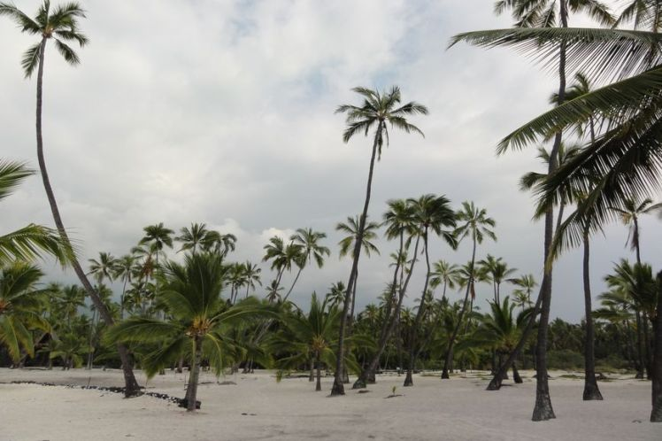 Voyage de noces à Hawaï - Big Island - Vernie par la Vie - N - Pu'uhona O Honauau National Historical Park