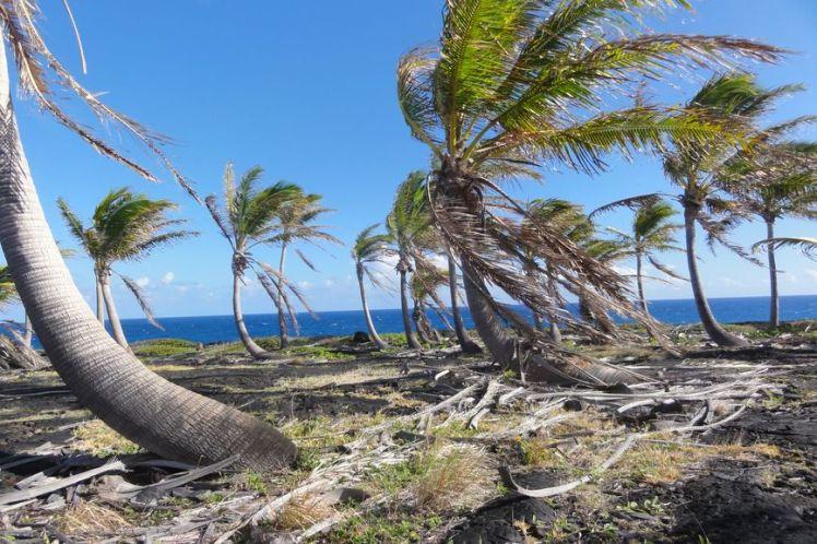Voyage de noces à Hawaï - Big Island - Vernie par la Vie - ZF - Volcano and craters