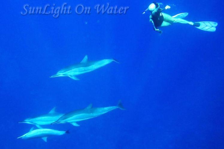Voyage de noces à Hawaï - Big Island - Vernie par la Vie - ZQ - Sunlight on Water Big Island