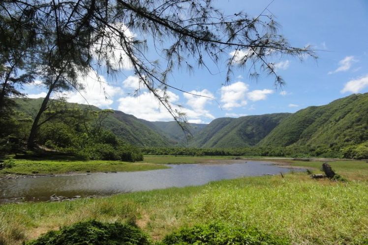 Voyage de noces à Hawaï - Big Island - Vernie par la Vie - ZY - Polulu Valley