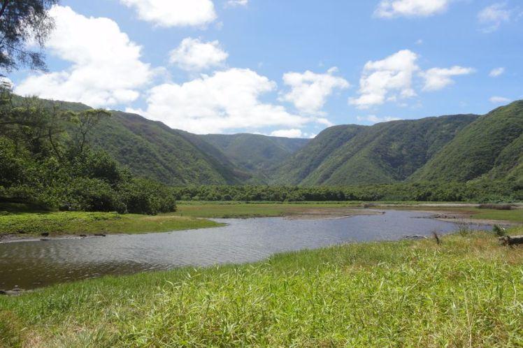 Voyage de noces à Hawaï - Big Island - Vernie par la Vie - ZZ - Polulu Valley