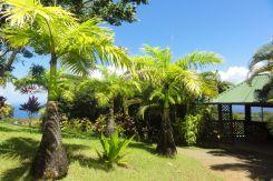 Hawaii Maui - Voyage de noces N