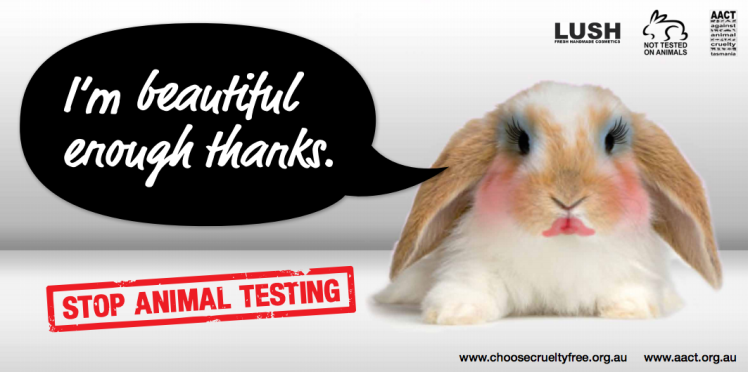 Animal testing - Cruelty free - cruauté animale 2