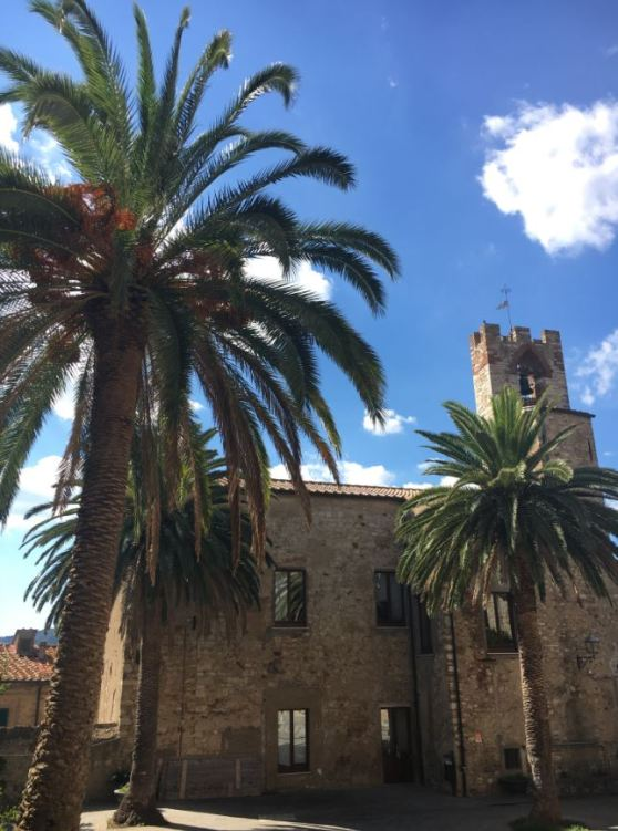 italie-toscane-baratti-suvereto-serraiola-alta-vernie-par-la-vie-t