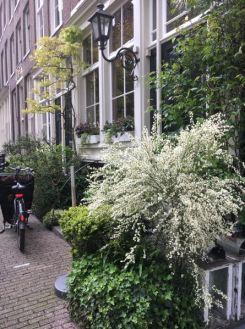 Amsterdam - Séjour Netherlands ZE